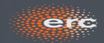 זוכות מענק ERC